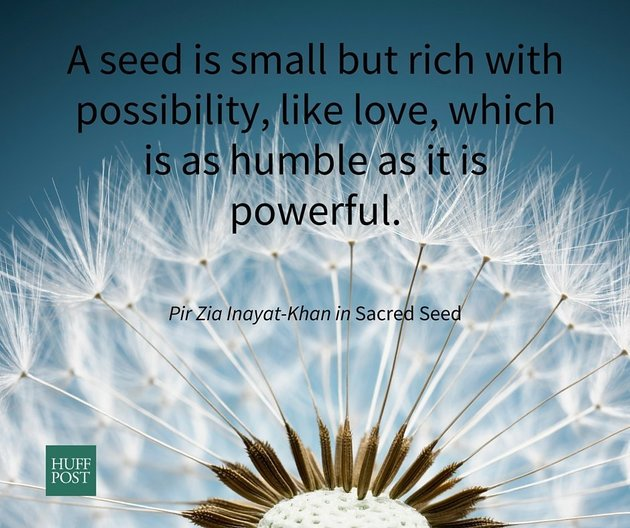 A seed is small but rich with possibility